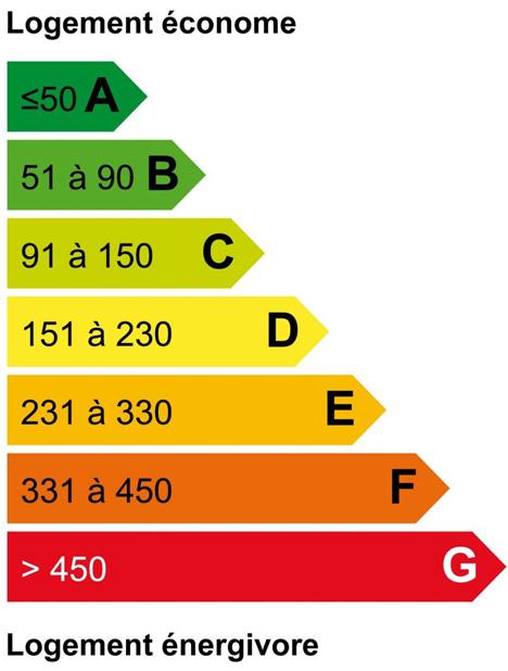valeur de la consomation énergétique : 252